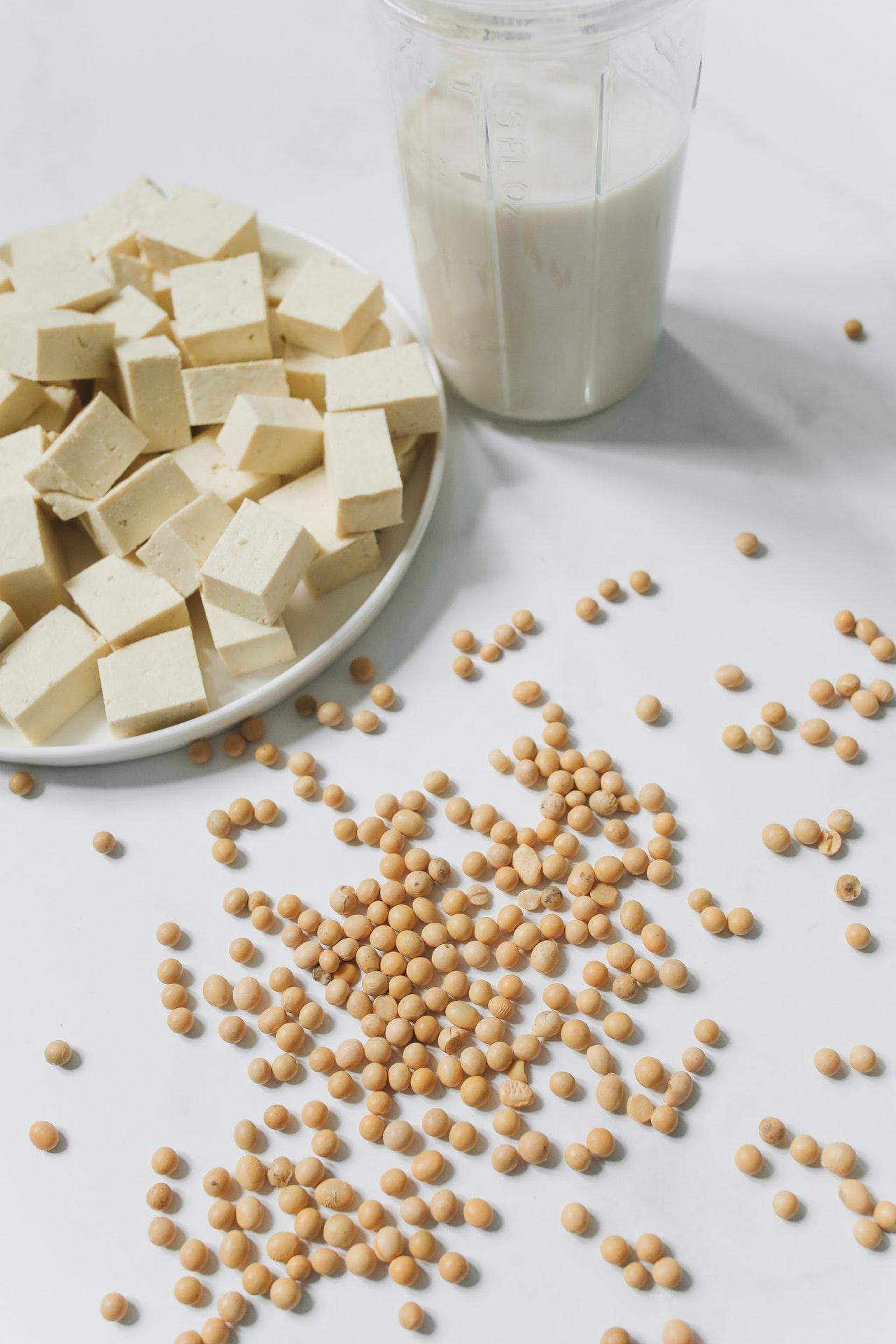 My Protein - test wegańskich odżywek białkowych